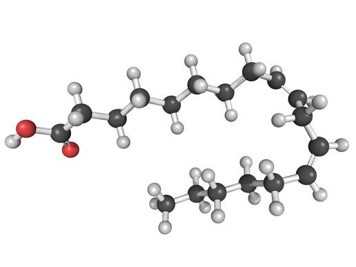 Omega-6 unsaturated fatty acid