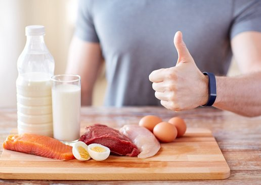 protein nutrition
