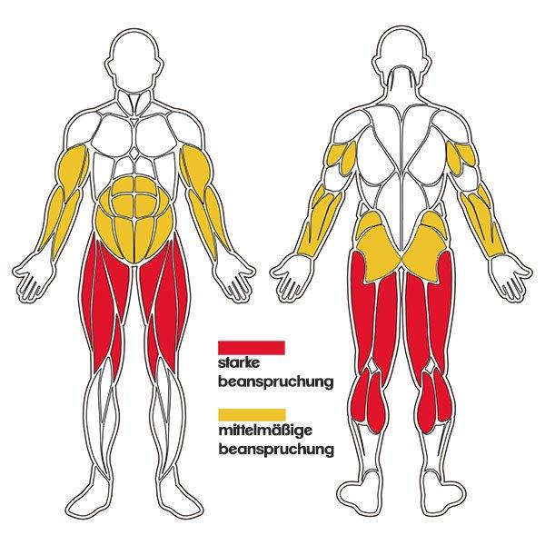 Seilspringen Muskelgruppen