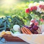 Bei welchen Lebensmitteln du nicht auf Bio-Produkte verzichten solltest