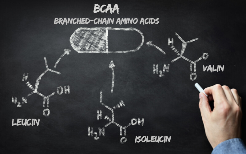 BCAA_Infografik Leucin Isoleucin Valin
