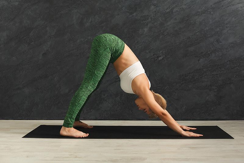 Yoga Asana Hund