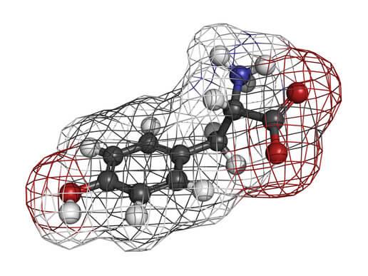 aminosaeuren