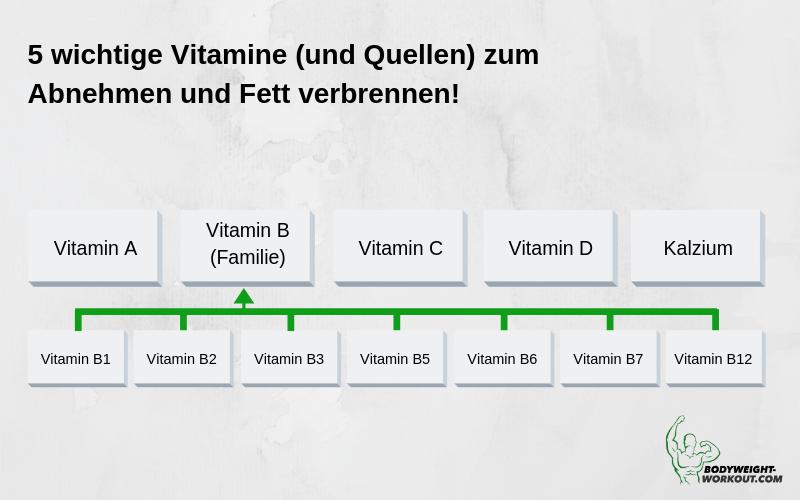 5 wichtige Vitamine zum Abnehmen und Fett verbrennen