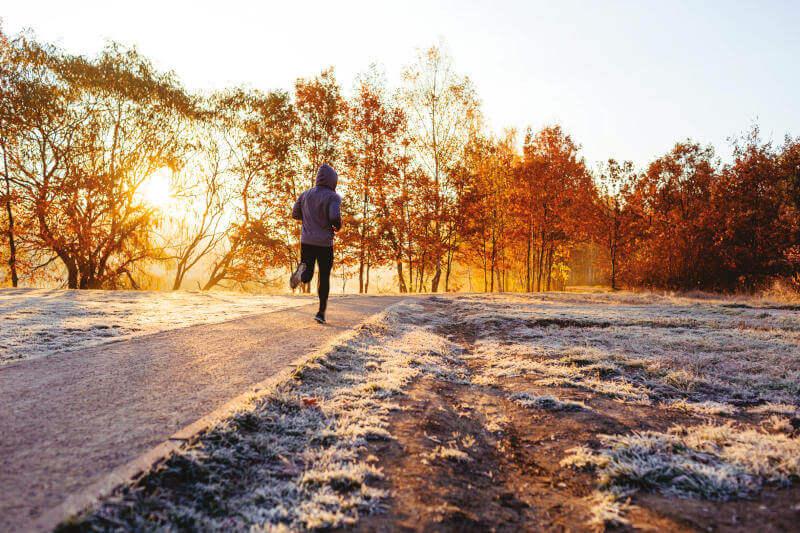 Ausdauertraining und Stoffwechsel Abnehmen